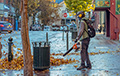 Leaf Blowers - Buying Guide , Safety Instructions
